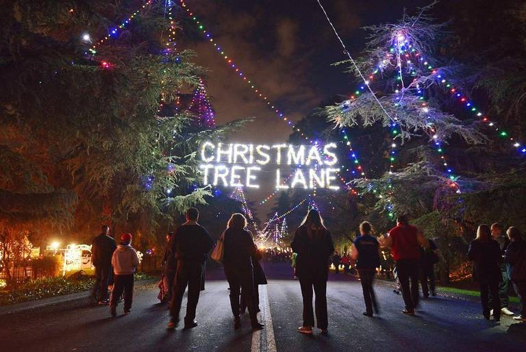 the fresno bee grab the family christmas tree lane about to open