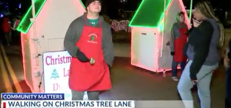 Sights, sounds and history of Christmas Tree Lane