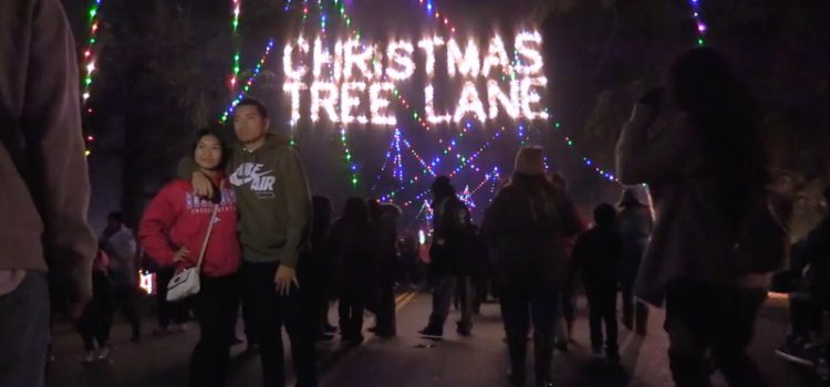 Smiles and Cheer at the first two walk-nights for Fresno's Christmas Tree Lane