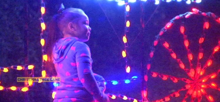 No shuttle service at this year's Christmas Tree Lane Walk Nights